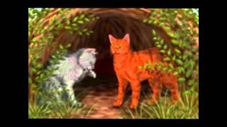 Коты-воители картинки)