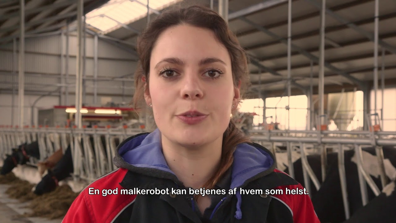 Kompileringsvideo – Lely Astronaut A5 pilot customers – DA