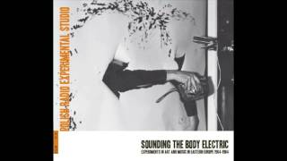 Bôłt Records | Sounding the Body Electric | CD2, 07 Arne Nordheim - Ode to Light (Rzeźba) (1968)