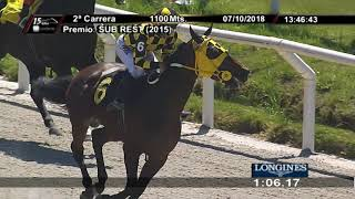 Vidéo de la course PMU PREMIO SUB REST
