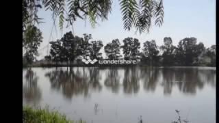PRESITA EL SAUZ De Cuerámaro, Gto., Méx.