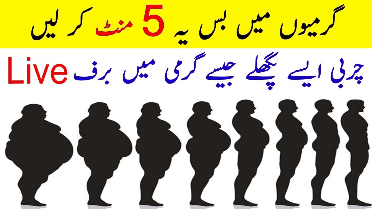 Free belly fat loss diet photo 2