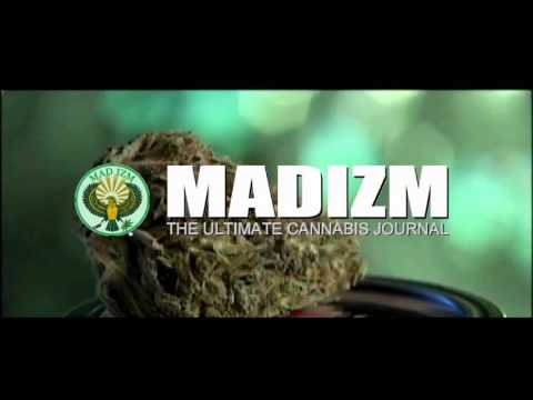 What Is Mad Izm? - Hakim Green