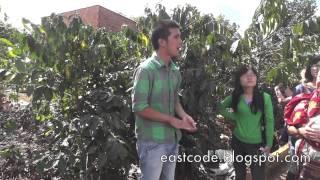 Coffee plantation tour Near DaLat Vietnam