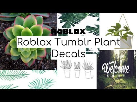 Tumblr Roblox Decal Picture 01 Roblox - Roblox Tumblr Plant Decal Codes Youtube