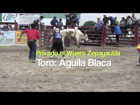 Rancho Ojo de Agua en la Herradura de Joliet 6/23/13