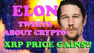 Elon Musk Tweets about Bitcoin - Ripple XRP Price EOY Now?! -