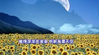 余天-心のこり(日)天涯芳草(為什麼我愛你)