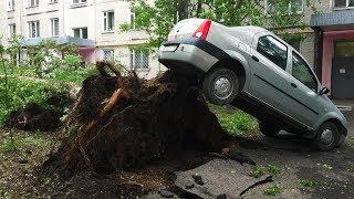 ПОСЛЕДСТВИЯ УРАГАНА В МОСКВЕ 29 МАЯ 2017 ВИДЕО! Дерево упало на парня! Погибло 15 человек!