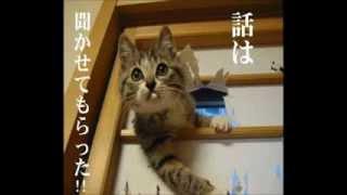 【2007年05月 吠え魂】 加藤浩次が若いときに新宿二丁目のホストにスカ...