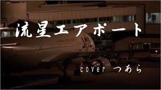 流星エアポート/岩波理恵 Cover つあら 岩波理恵 検索動画 30