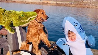 Shark SAVES Puppy From Alligator!