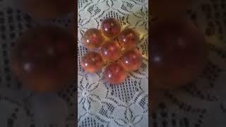 Las 7 esferas del dragón