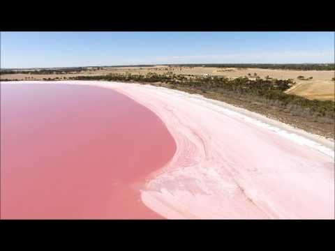 Pink Lake Victoria Australia