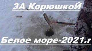 Рыбалка в северной Карелии За корюшкой к Баклану На Белое море г Кемь 2021год