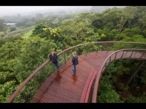 World's First Botanical Garden, Kirstenbosch National Botanical Garden, Cape Town, South Africa