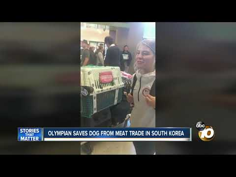 Olympian saves dog from meat trade in South Korea