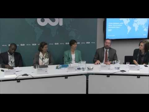 Private investment, public money: evaluating development impact - Q&A 1