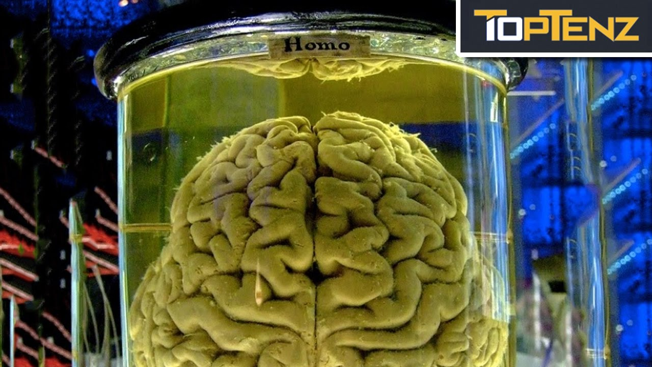 9 interesting thought experiments