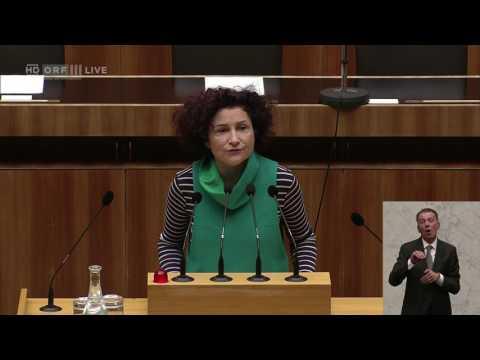 20170301 Nationalratssitzung 3 Alev Korun Grüne 1513098980