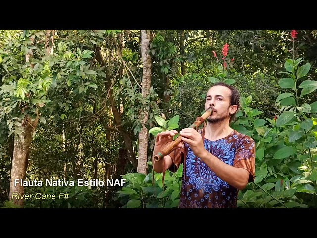 Native Flöte River Cane F#