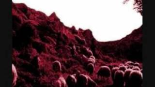 Fabio Orsi & Valerio Cosi - Pink Sheep Blood
