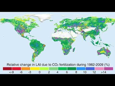 Carbon Dioxide: Benefiting the Biosphere