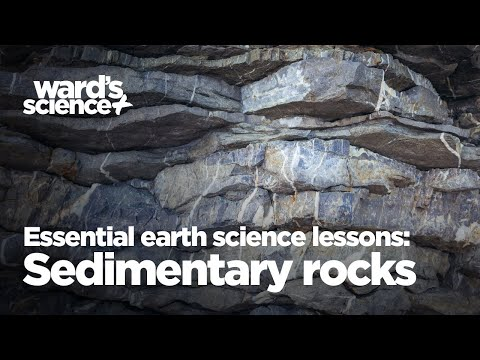 Essential Activities for Essential Earth Science Lessons: Sedimentary Rocks