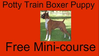 **WOOT** Potty Train Puppy Boxer - Free Mini-course on Potty Train Puppy Boxer