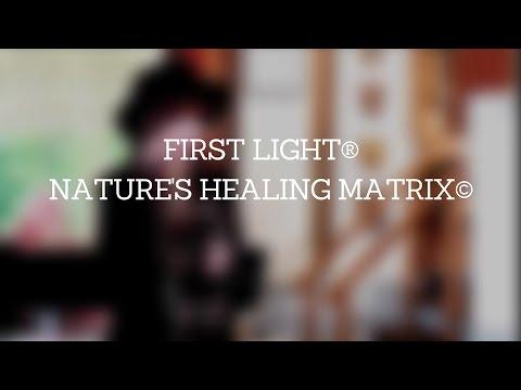 Nature's Healing Matrix: Personality, Aura, Chakras, DNA and Soul
