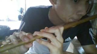 Hướng dẫn thổi sáo: Quê Tôi Thùy Chi- YouTube