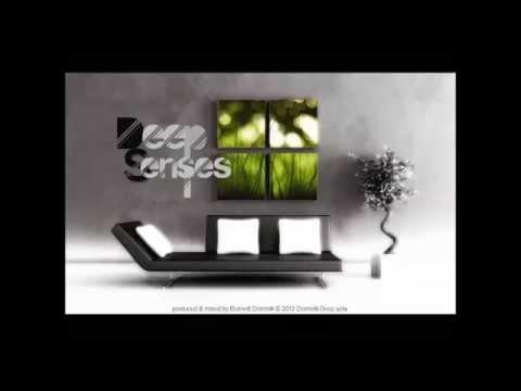 Deep Senses uplifting deep house set mixed by Bennett Dominik)