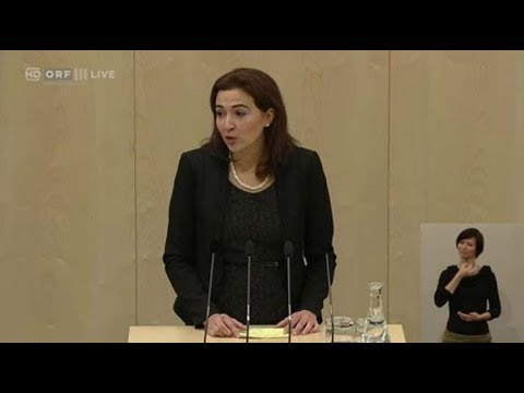 Alma Zadic Zu Sicherheitspolitik Youtube