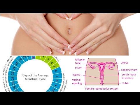 இயற்கையான-முறையில்-வேகமாக-கருத்தரிப்பது-எப்படி?-7-வழிகள்-|-how-to-conceive-&-get-pregnant-naturally