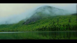ホワイトマウンテン国立森林公園(White Mountain National Forest)を調べる