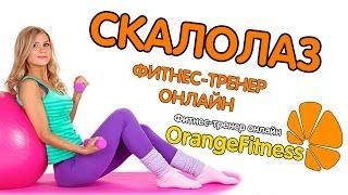Упражнение Скалолаз. Техника выполнения (OrangeFitness фитнес-тренер онлайн)
