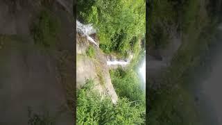 Бабочки Гималайские Природа водопады