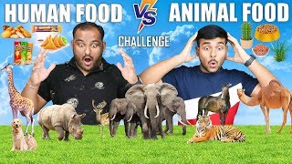 ANIMAL FOOD VS HUMAN FOOD EATING CHALLENGE | Food Eating Competition | Food Challenge