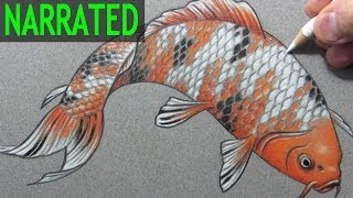 "How to Draw a Fish (""Koi""): Narrated Step-by-Step"