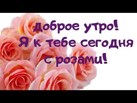 Доброе утро с розами! Красивая музыкальная видио открытка. Красивые поздравления от души