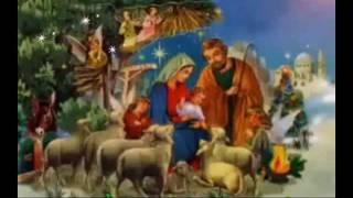 Vì Chúa đã Giáng Trần (Bosco Thiện-Bản)