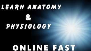 anatomy and physiology | learn anatomy & physiology online fast | body anatomy 🔥🔥🔥🔥