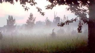 Nicola Arigliano - Nebbia