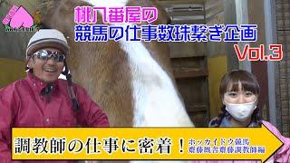 Download 【競馬】競馬の仕事数珠繋ぎ企画!調教師のお仕事編!