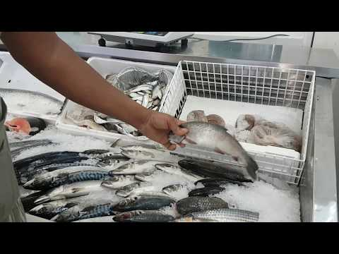 Fishport Fishmongers (Black History Month Special 2017)
