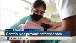 Expertos aseguran que lactancia materna ayuda a prevenir enfermedades