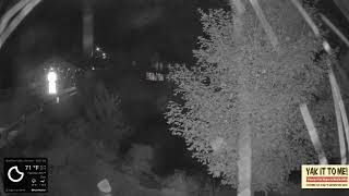 Preview of stream Covered Bridge Webcam Vermont's Mad River Valley