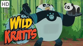 Wild Kratts: The Panda Thumb thumbnail