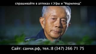 """Санчи - сокровище китайской традиционной медицины, """"королева восточных трав"""""""