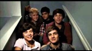 One Direction - Video Diaries Memories